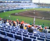 久々に野球観戦