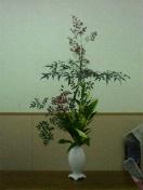 お正月のお花④